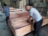Do núcleo concreto do Poplar da colagem da madeira compensada WBP da construção primeira classe
