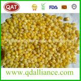 Gefrorene super süsser Mais-Kerne