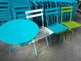 Meubles de jardin Chaise pliée en plein air (WF-060315)