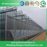 Serra di giardinaggio economica popolare del PC della Multi-Portata per la verdura