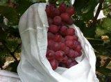 Pp.-nichtgewebter Gewebe-Frucht-Deckel