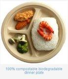 Cuvettes humides biodégradables personnalisées respectueuses de l'environnement non blanchies de bagasse de pulpe de moule à presser