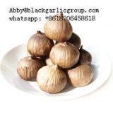D'appétissants noir de fermentation de l'ail