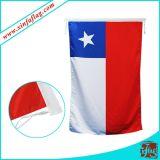 Bandiera d'attaccatura personalizzata di disegno/bandiera del poliestere