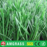 Artificial Grass Carpet for Soccer and Garden with High Quality