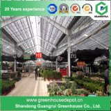 Invernadero vegetal de la película plástica de la flor del Multi-Palmo de China