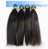 Tecelagem peruana do cabelo humano do Virgin (KBL-pH-ST)