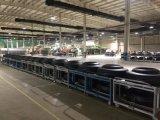 Joyall 상표 TBR 광선 강철 트럭 타이어 (12R20, 11R20)