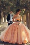 Vestiti di corallo da Vestidos Quinceanera dell'abito di sfera del Organza di spettacolo (Q252)