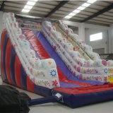 Красочные детей надувной слайд (SL-008)