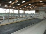Blockierenkuh-Pferden-Matten, die Gummimatten-Landwirtschafts-Gummi-Matte blockieren