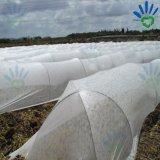 Il raccolto copre UV non tessuto legato del tessuto filato polipropilene stabilizzato