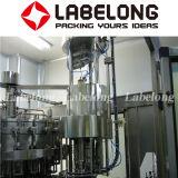 La stimulation de l'eau de bouteilles PET Making Machine