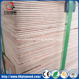 nuez de 2440*1220*3m m/madera contrachapada del roble/del abedul/Bintangor/Okoume