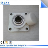 PBT termoplástico Vivienda Ssucp210 con rodamiento de acero inoxidable / Almohada bloque de cojinete
