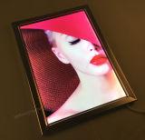 Casella chiara del blocco per grafici a schiocco sottile del LED
