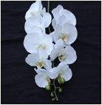 Цветки орхидей высокого качества домашние декоративные искусственние цветастые для венчания дня рождения партии