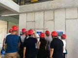 Het lichtgewicht EPS van het Cement van de Vezel van de Thermische Isolatie Samengestelde Comité van de Sandwich