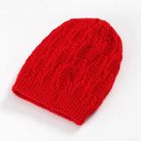 レディースメンズ男女兼用の編まれたケーブルの冬の暖かい二重層の帽子の帽子(HW142)