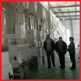 120t/Dは統合された米製造所ラインを完了する