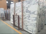 Importé Arabescato Corchia dalle de marbre blanc poli pour comptoir/Vanitytop/Fountain/foyer/Fountain/Wallpanel/Flooring/escalier/Cuisine/Salle de bains/Livingroom