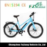 36V de Motor van de batterij 250W Dame Electric Bike met AchterRek