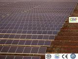 Marcação RoHS TUV aprovado constituídos 330W Módulo Solar com tolerância positiva oferecem