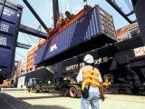 Frete de mar do agente da logística do transporte de Guangdong a Oman