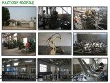 Cremagliera commerciale di Dumbblell della cremagliera di Dumbbell delle 3 file/della strumentazione ginnastica di forma fisica