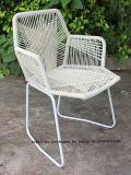 藤の肘掛け椅子のTropicaliaのレストランの庭のビーチチェアを食事する屋外の金属