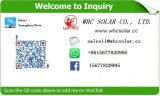 regulador solar de 12V/24V PWM 20A para el uso casero solar