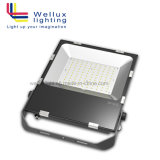 Meanwell 운전사와 Osram LEDs를 가진 최신 판매 옥외 IP66 150W 90 Lm/W SMD LED 투광램프 보장 5 년