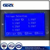 GM高圧デジタルMegohmmeterデジタルのmegohmmeter