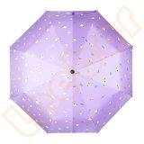 نساء قوّيّة [سون] 3 يطوي ظل مظلة