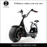 Batteria elettrica del motore 60V12A20A del motociclo 1000W della bici del motorino del selettore rotante di grande del mercato della domanda stile di Harley