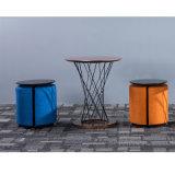 Tipo sgabelli pubblici del tessuto per zona di disposizione dei posti a sedere pubblica degli elementi allentati della mobilia