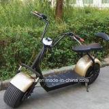 Vespa eléctrica Har del estilo popular de 2018 con las ruedas grandes