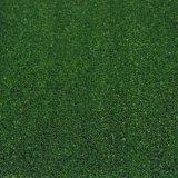 Плоская форма 10мм теннис Sport искусственных травяных с SGS