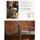 Base di cuccetta economica del doppio della camera da letto del mobilio scolastico con la scala