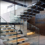 Escalera de madera de la barandilla doble del acero inoxidable con el pasamano de cristal