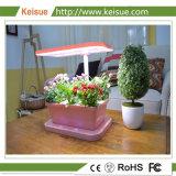 Keisue LED de interior hidropónicos máquina creciente Kes 3.0