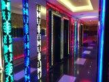 CE, RoHS aprobados IP65 LED Neon Flex RGB