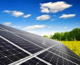 Цена высокого качества дешевое панель солнечных батарей ранга 300W Mono