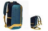 OEM Китая Hiking назад - пакет резвится мешок перемещения Nylon высокого качества мешка Backpack водоустойчивый