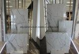 Los materiales de construcción Natural Especial de azulejos de mármol de cuerpo completo