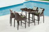 Tableau en aluminium HS7213adt extérieur/de jardin/patio Rattan& de barre