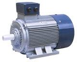 Электрический двигатель вентиляторной системы охлаждения серии Y2 трехфазный высокоскоростной