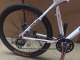 Nueva Aleación de Bicicletas Mountain Bike de Shimano de velocidad de 27