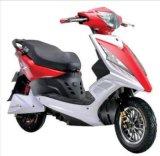 500W-800W Scooter eléctrico/Motociclo de bicicletas eléctricas para Personalizado