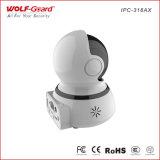 Wireless H. 264 IP van de Nacht van de Dag van WiFi IRL de Toebehoren van de Systemen van het Alarm van de Motie van de Steun van de Kaart van de Camera BR van de Veiligheid